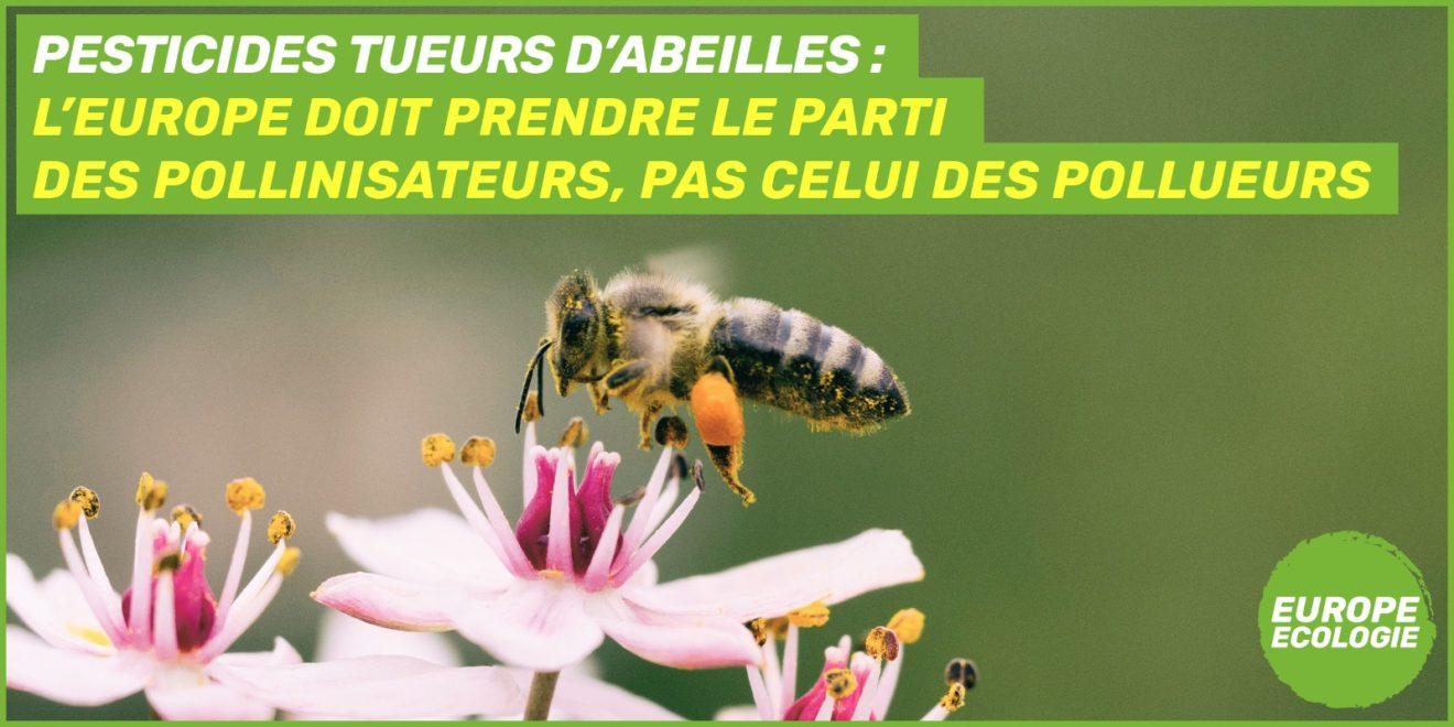 Biodiversité : n'attendons plus pour interdire les trois insecticides néonicotinoïdes tueurs d'abeilles