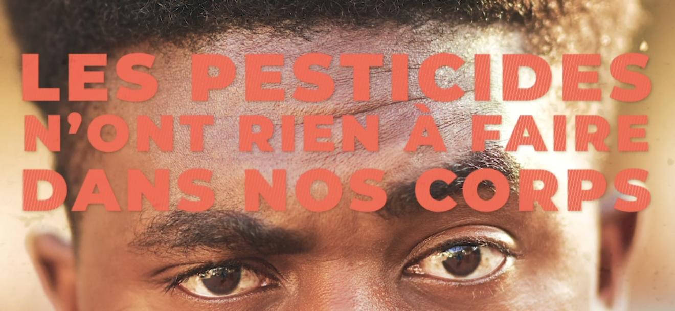 Exposition aux pesticides : nos cheveux témoins de notre exposition globale