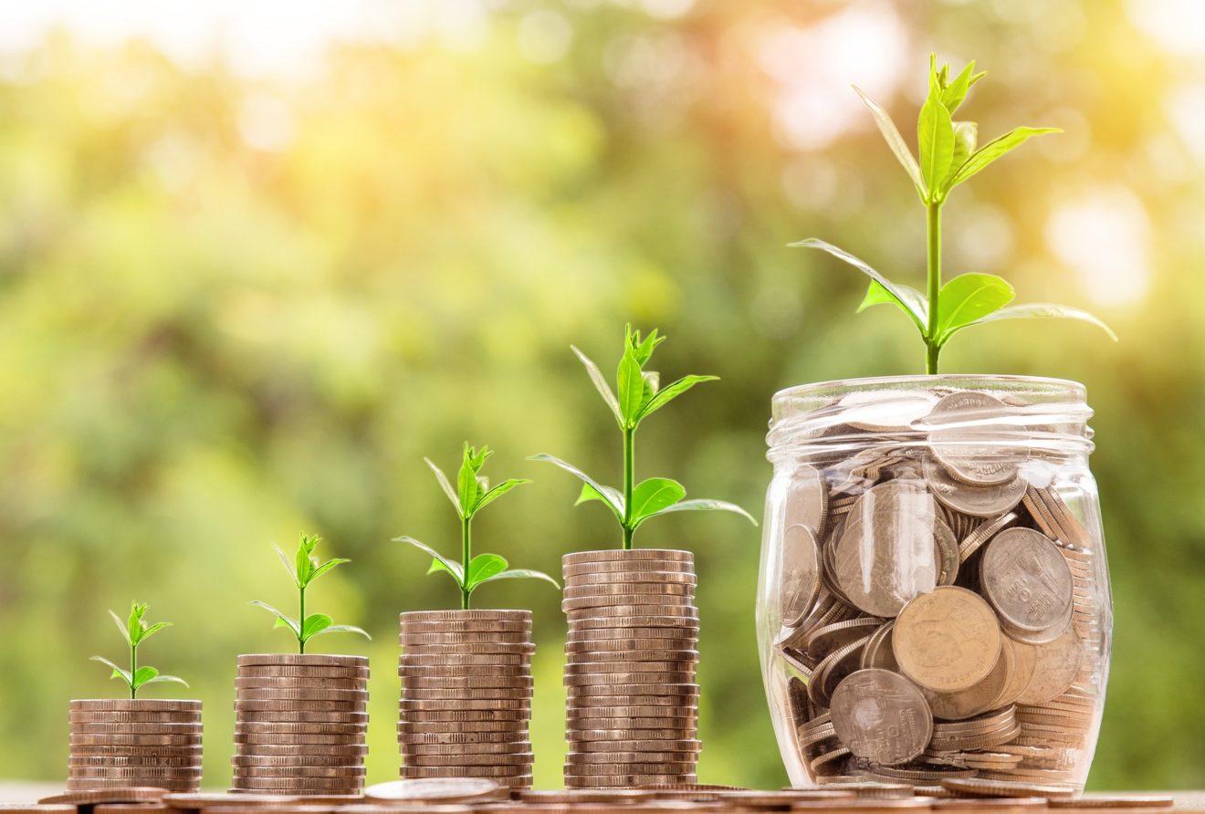 Taxonomie : un premier pas vers le financement d'investissements durables !