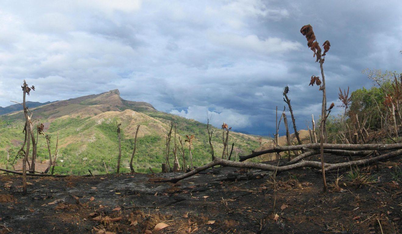 Mercosur : La Commission européenne souffle sur les braises