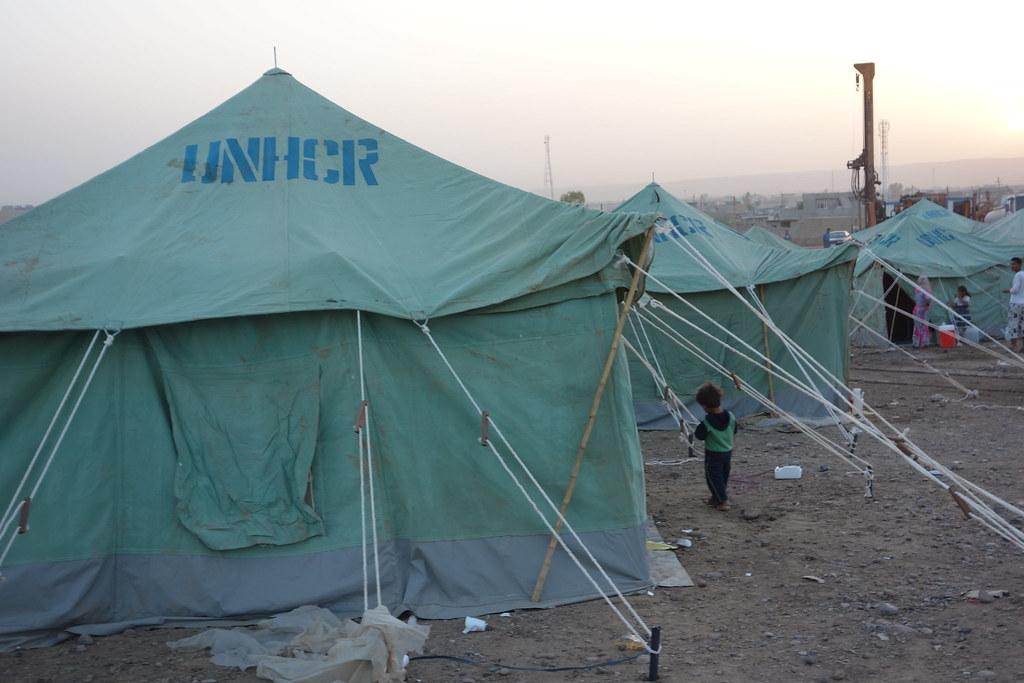 Enfants français des camps syriens : le gouvernement devant ses responsabilités