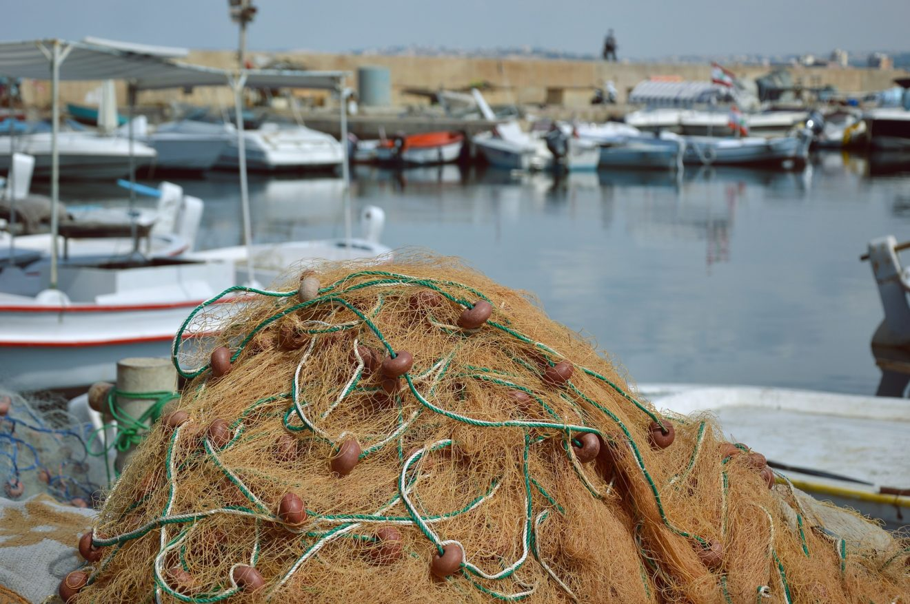 Les ministres de la pêche doivent respecter la loi !