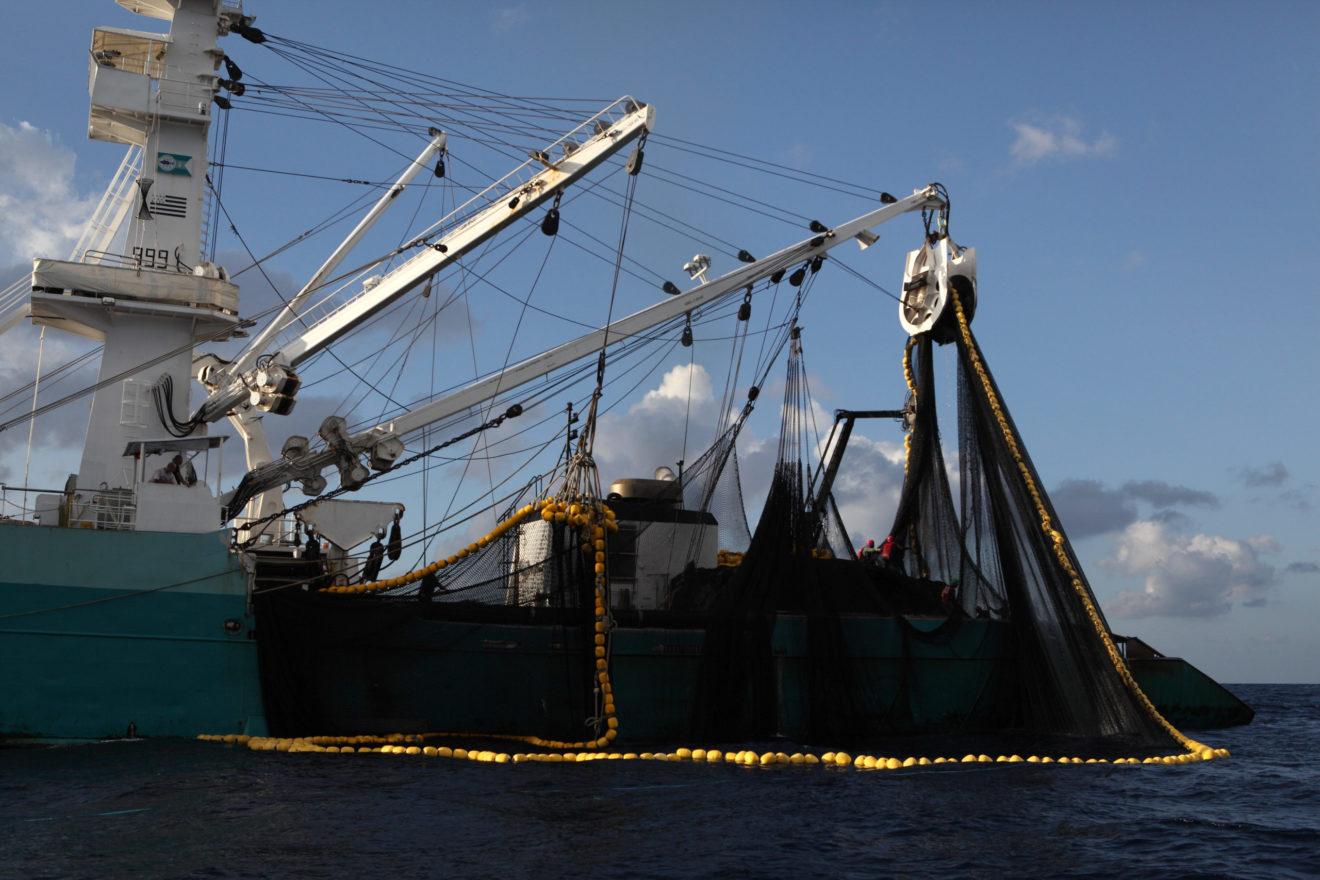 Le Parlement européen adopte le rapport de Caroline Roose sur l'Accord de Pêche UE-Seychelles
