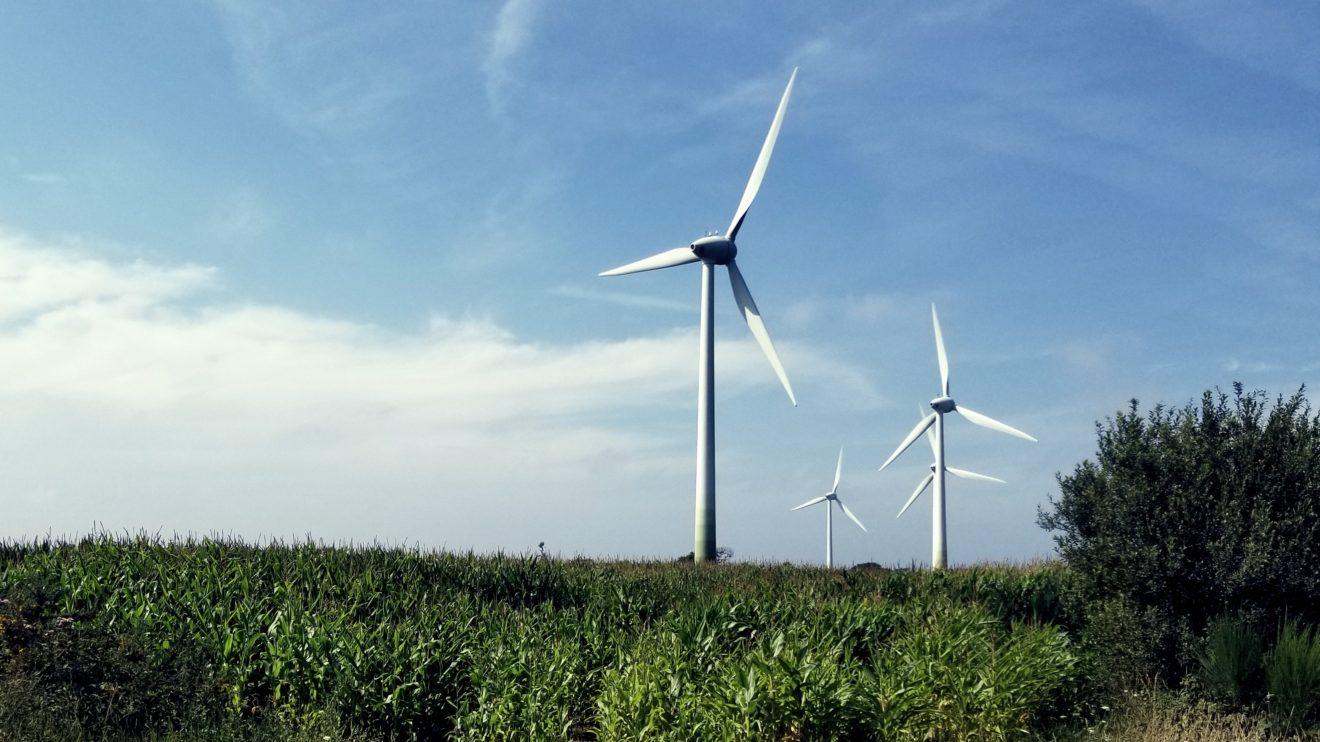 Adoptons une stratégie industrielle verte et ambitieuse!