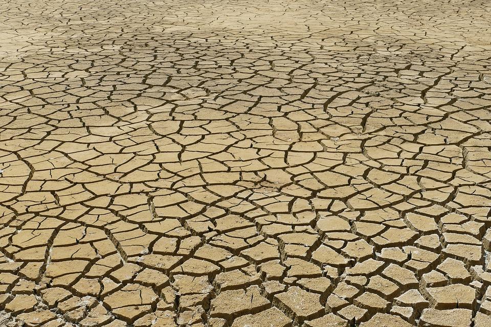 Pourquoi Caroline Roose s'est abstenue lors du vote du rapport sur le climat et les populations vulnérables