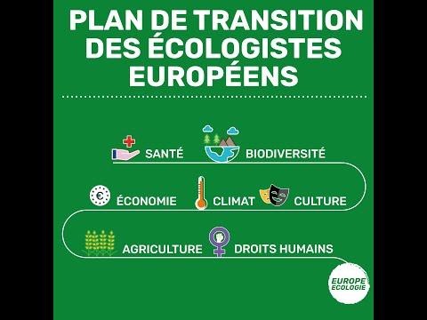 David Cormand présente le plan de transition des écologistes européen·ne·s