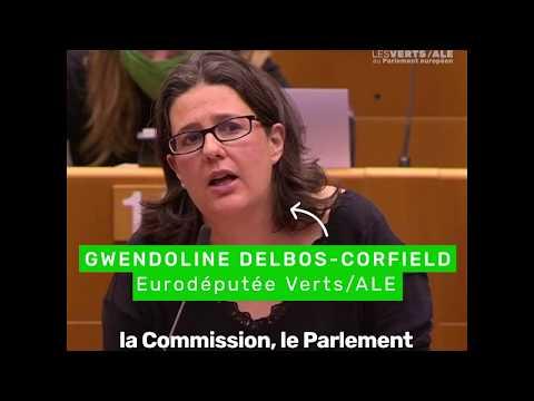 Gwendoline Delbos Corfield sur l'état de droit en Hongrie