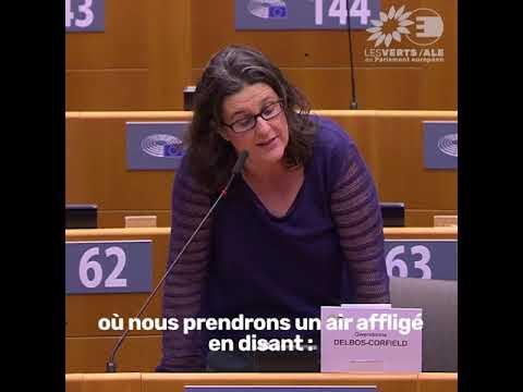 Gwendoline Delbos-Corfield : intervention en plénière