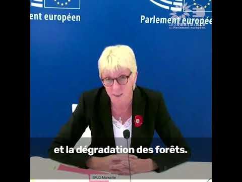 Caroline Roose sur la déforestation