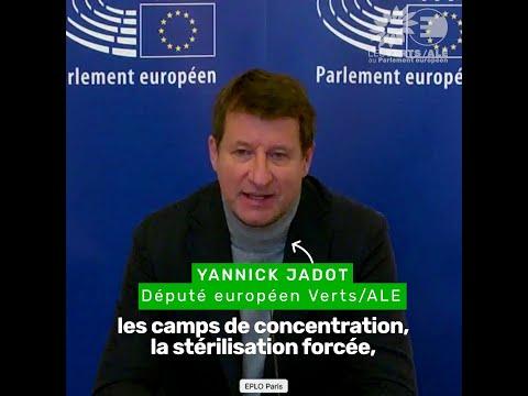 Yannick Jadot sur la situation au Xinjiang