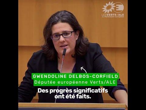 Gwendoline Delbos-Corfield sur le Brexit