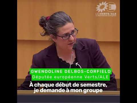 Gwendoline Delbos-Corfield sur la présidence portugaise